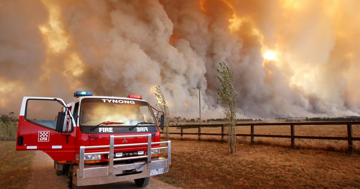 What does a wet spring mean for bushfire season?