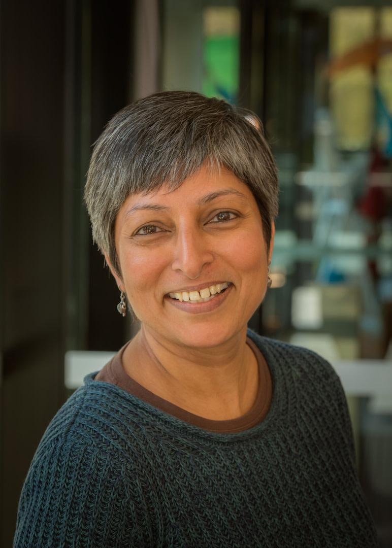 Associate Professor Radhika Gorur
