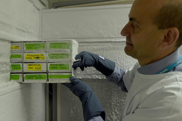 The lab contains cervicovaginal fluid donated by more than 3500 pregnant women. Picture: Paul Burston