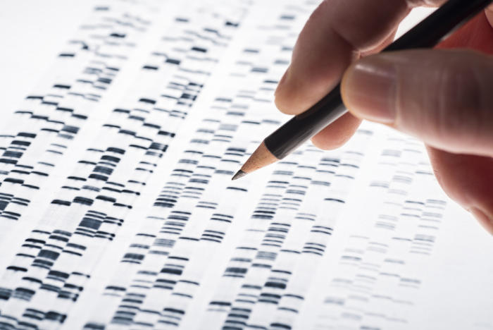 Genetics only tell us part of the story about how a human will behave. Picture: Shutterstock