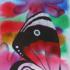 Eighty-eight Butterfly 2