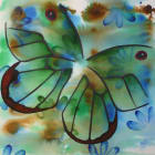 Glasswing 2