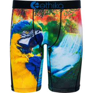 502e4bba404d ETHIKA PARRODISE STAPLE BOXER BRIEFS from Tilly's .