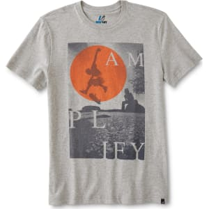 34096fc7 Amplify Young Men's Graphic T-Shirt-Skater, Size: Medium, Tabby Grey ...