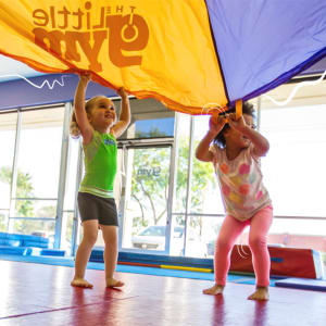 The Little Gym's Summer Camps