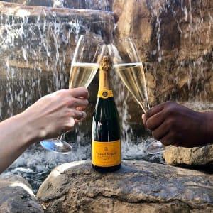 Chef & Champagne