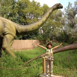 Field Station Dinosaur Show