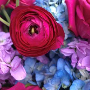 Dubon Flowers Pop-Up Shop