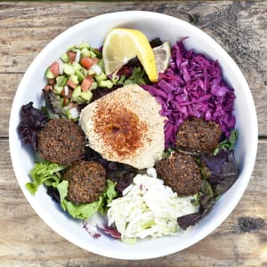 Free Falafel balls on any Plate or Salad
