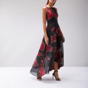 Coast Isla Printed Maxi Dress