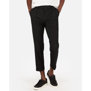 Express Mens Pleated Cropped Dress Pant