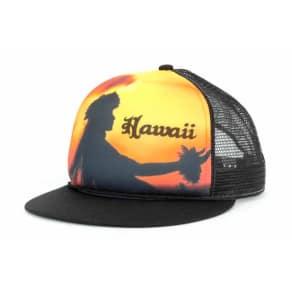 Hawaii Hawaii Hawaii Luau Trucker