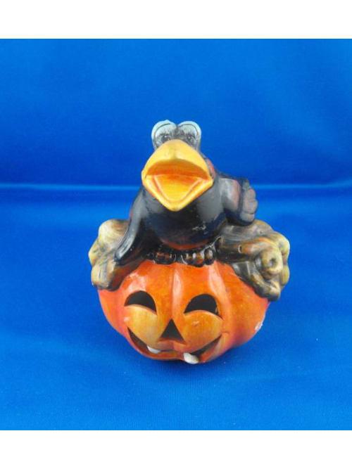 Zucca Halloween Con Corvo Nero