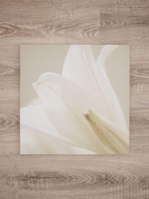 Quadro fiore bianco in tessuto con telaio in legno - Kj Collection
