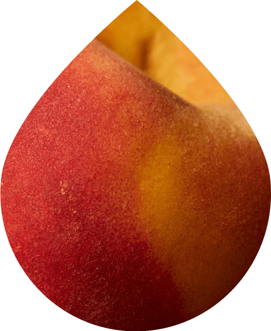 Classic Peach