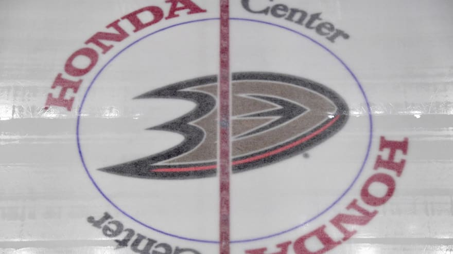 Ducks announce several front office moves